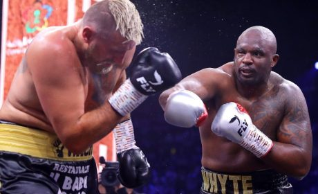 Finding the Best Boxing Betting Tips Across the Web